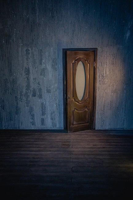 двери входные офис метро дмитровская
